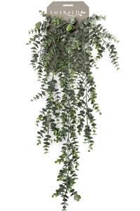 Bilde av Kunstig Hengende Eukayptus 75cm