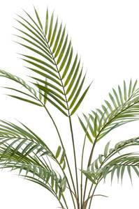 Bilde av Kunstig Chamaedorea Palme i Retro Potte 70cm