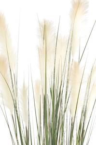 Bilde av Kunstig Pampas Gress 120cm