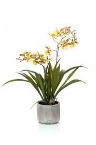 Bilde av Kunstig Oncidium Orkide Gul i Potte 45cm