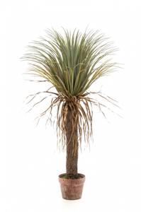 Bilde av Kunstig Yucca Palme Vill 110cm