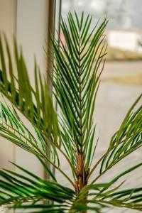 Bilde av Kunstig Areca Palme 140cm